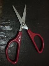 gunting tumpul
