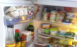 makanan di dalam kulkas