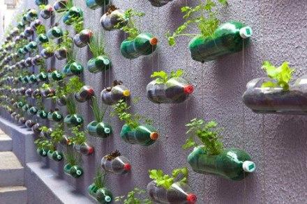 cara membuat tanaman hidroponik